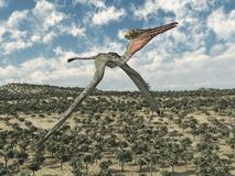 Vuelo del Pterodactylus de Pterosaur sobre un paisaje libre illustration