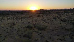 Vuelo hacia la puesta del sol sobre el desierto de Sonoran metrajes