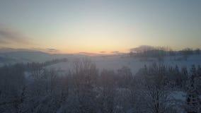Vuelo nórdico aéreo del paisaje del invierno sobre bosque de la montaña de la nieve en salida del sol Vuelo del abejón del invier almacen de metraje de vídeo