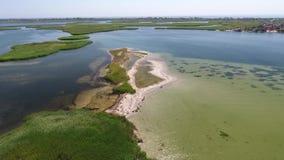 Vuelo para una gaviota que vuela sobre el mar transparente claro a una isla hermosa con la arena blanca y la caña verde metrajes