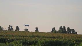 Vuelo plano sobre campo de maíz en la salida del sol metrajes