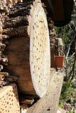 Vuelo salvaje de la abeja delante del refugio del insecto Imagen de archivo libre de regalías