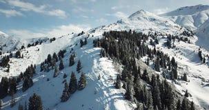 Vuelo sobre árboles coníferos nevosos, montañas blancas como la nieve y nubes Tiroteo desde arriba con un abejón almacen de video