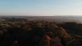 Vuelo sobre Autumn Forest y las ruinas de una fortaleza militar almacen de metraje de vídeo