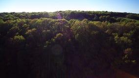 Vuelo sobre campo, 4K secuencia 2 de 2 - vuelo sobre el bosque y descubrimiento de un campo marr?n arado, pastando la luz de la t almacen de metraje de vídeo