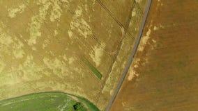 Vuelo sobre campos agrícolas verdes y amarillos en Rusia almacen de metraje de vídeo