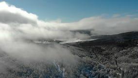 Vuelo sobre el bosque nevoso de la montaña brumosa del invierno cubierto con nieve almacen de metraje de vídeo