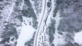 Vuelo sobre el camino del invierno, rodeado por paisaje hermoso del invierno del bosque conífero metrajes