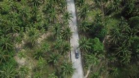 Vuelo sobre el camino en la selva en la isla de Koh Phangan almacen de video