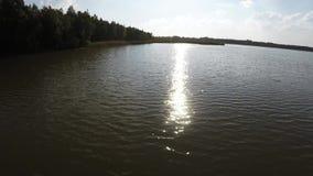 Vuelo sobre el lago del bosque metrajes