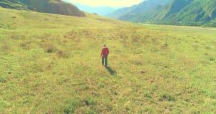 Vuelo sobre la mochila que camina al turista que camina a trav?s de campo verde de la monta?a Valle rural enorme en el d?a de ver almacen de metraje de vídeo