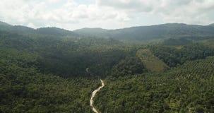 Vuelo sobre la selva de la isla de Koh Phangan metrajes