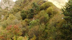 Vuelo sobre las montañas en el terreno montañoso sobre el bosque conífero con vistas al pueblo de montaña adentro almacen de video