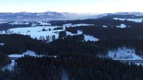 Vuelo sobre paisaje del invierno almacen de metraje de vídeo