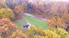 Vuelo sobre parque del otoño almacen de metraje de vídeo
