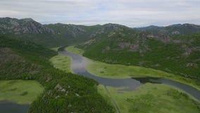 Vuelta circular del arroyo del tiroteo aéreo con los lirios verdes en superficie del agua metrajes