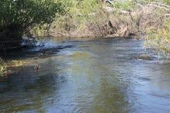 Vuelta y aceleración del flujo del río imagen de archivo