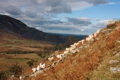Vues autour de la vallée d'Ogwen Photos libres de droits