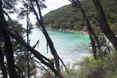 Vues côtières et roches du Nouvelle-Zélande d Y Images libres de droits