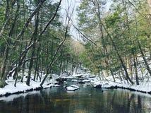 Vues d'hiver de parc d'état d'Enders photographie stock