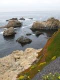 Vues d'océan colorées Photographie stock