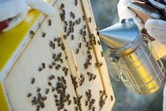 Vues d'une ruche d'abeille Apiculteur moissonnant le miel Le fumeur d'abeille image libre de droits