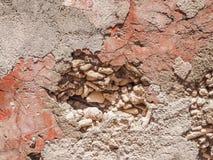 Vues de corail du Curaçao de secteur de Petermaai de mur photographie stock