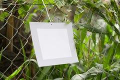 Vues de la pose de papier peint dans la barrière des fermes de fourrage photographie stock