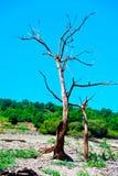 Vues de réservoir de Belesar en rivière de Minho Photographie stock