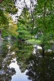 Vues des arbres et des aspects uniques de nature entourant la Nouvelle-Orléans, y compris les piscines se reflétantes dans les ci photo stock