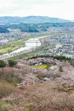 Vues des fleurs de cerisier chez Shiroishi RiversideHitome Senbonzakura ou mille cerisiers à vue et chaîne de montagne de Zao vue Photos stock