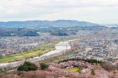 Vues des fleurs de cerisier chez Shiroishi RiversideHitome Senbonzakura ou mille cerisiers à vue et chaîne de montagne de Zao vue Photographie stock libre de droits