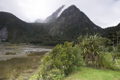 Vues des montagnes et des roches du Nouvelle-Zélande Images stock
