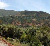 Vues du paysage montagneux photos stock