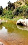 Vues du paysage montagneux photo libre de droits