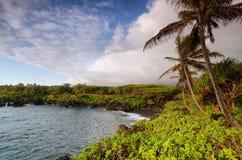 Vues noires de plage de sable en parc d'état de Waianapanapa Image stock