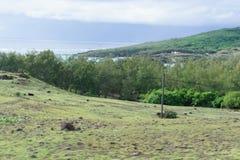Vues renversantes du flanc de montagne sur la côte du sud de l'île de Rodriguez image stock