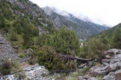 Vues scéniques de la gorge Dugoba au Kirghizistan Photographie stock