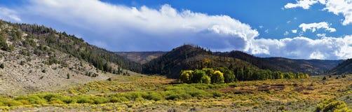 Vues tôt de forêt de panorama d'automne de fin d'été augmentant par des arbres dans le canyon indien, la boucle de canyon de Neuf photo libre de droits