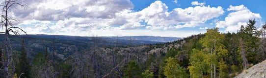 Vues tôt de forêt de panorama d'automne de fin d'été augmentant par des arbres dans le canyon indien, la boucle de canyon de Neuf image libre de droits