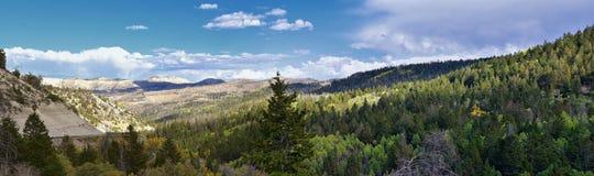 Vues tôt de forêt de panorama d'automne de fin d'été augmentant par des arbres dans le canyon indien, la boucle de canyon de Neuf photographie stock libre de droits