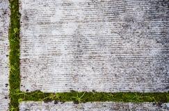 Vuile Achtergrond met groen detail Stock Afbeelding