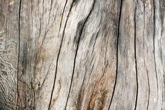 Vuile houten achtergrond Stock Afbeeldingen