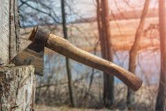 Vuile houthakkersbijl in boom royalty-vrije stock foto