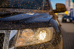 Vuile koplamp SUV royalty-vrije stock foto's