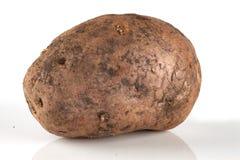 Vuile, ongewassen aardappel Stock Afbeelding