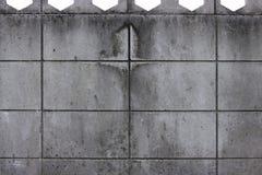 Vuile paddestoel op de concrete achtergrond van de blokmuur Royalty-vrije Stock Afbeeldingen