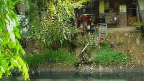 Vuile rivier en mens op krottenwijkhuis stock video