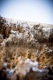 Vuile vuile sneeuw, de winter in stad stock afbeelding