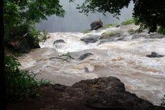 Vuile stroomrivier Zambezi (Afrika) Stock Afbeeldingen